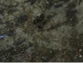 Labradorite Verde